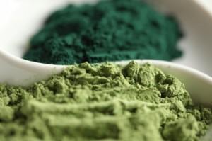 Algi Spirulina i Chlorella: podobieństwa i różnice
