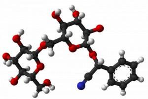 Amigdalina