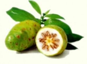 Cud owocu Noni