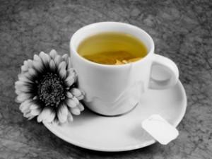 Zielona herbata - źródło zdrowia i młodości