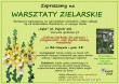 Warsztaty Zielarskie w Krakowie, 26 listopada